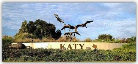 Pest Control Katy