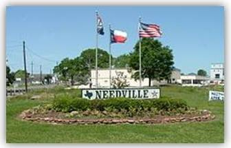 Pest Control Needville Texas