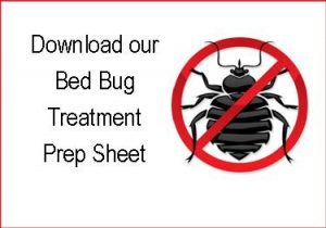 Prep  Bed Bugs Reviews
