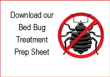 Bed Bug Prep Download