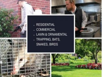 Residential, Commercial, L&O, Trapping