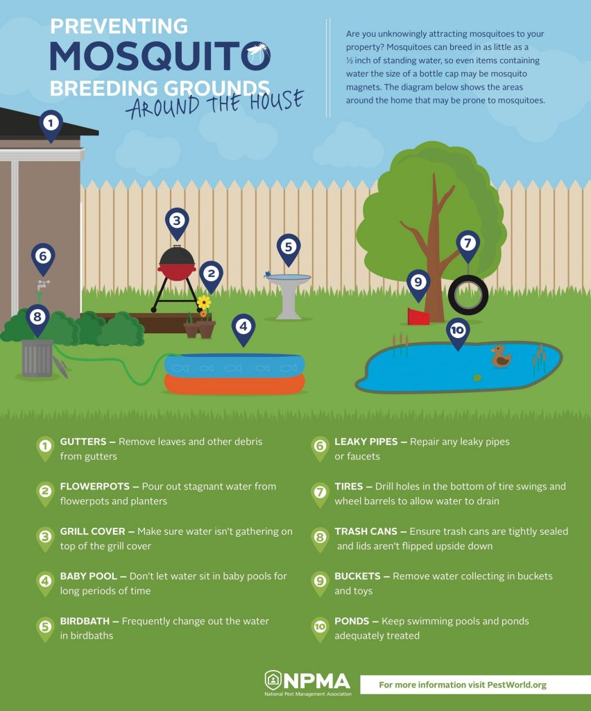 Mosquito Breeding sites
