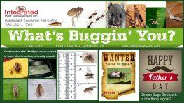 June 2018 Integrated Pest Mgmt Newsletter