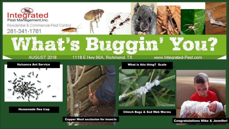 August 2018-Integrated Pest Management, Inc. Newsletter