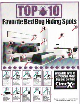 Top 10 Bed Bug Hiding Spots