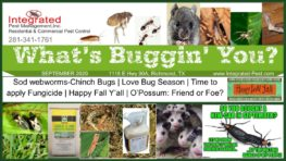 September 2020 Integrated Pest Newsletter