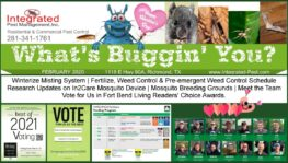 Feb Newsletter, Lawn, Mosquitoes, meet the team