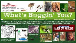 August 2021 Integrated Pest Newsletter